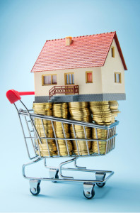 Home up for sale in a shopping trolley